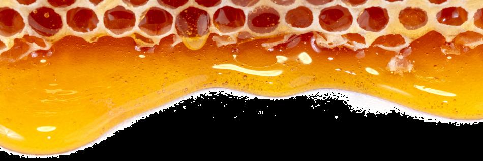 griechischer Honig
